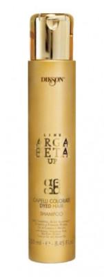 Шампунь для окрашенных волос с кератином Dikson ARGABETA UP Shampoo Capelli Colorati 250мл: фото